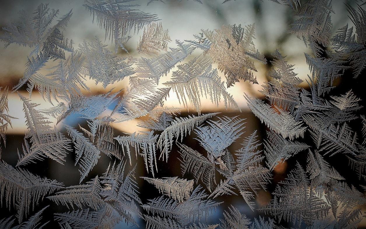 frost_on_the_glass_patterns_window_bokeh_winter_2560x1600 (2)