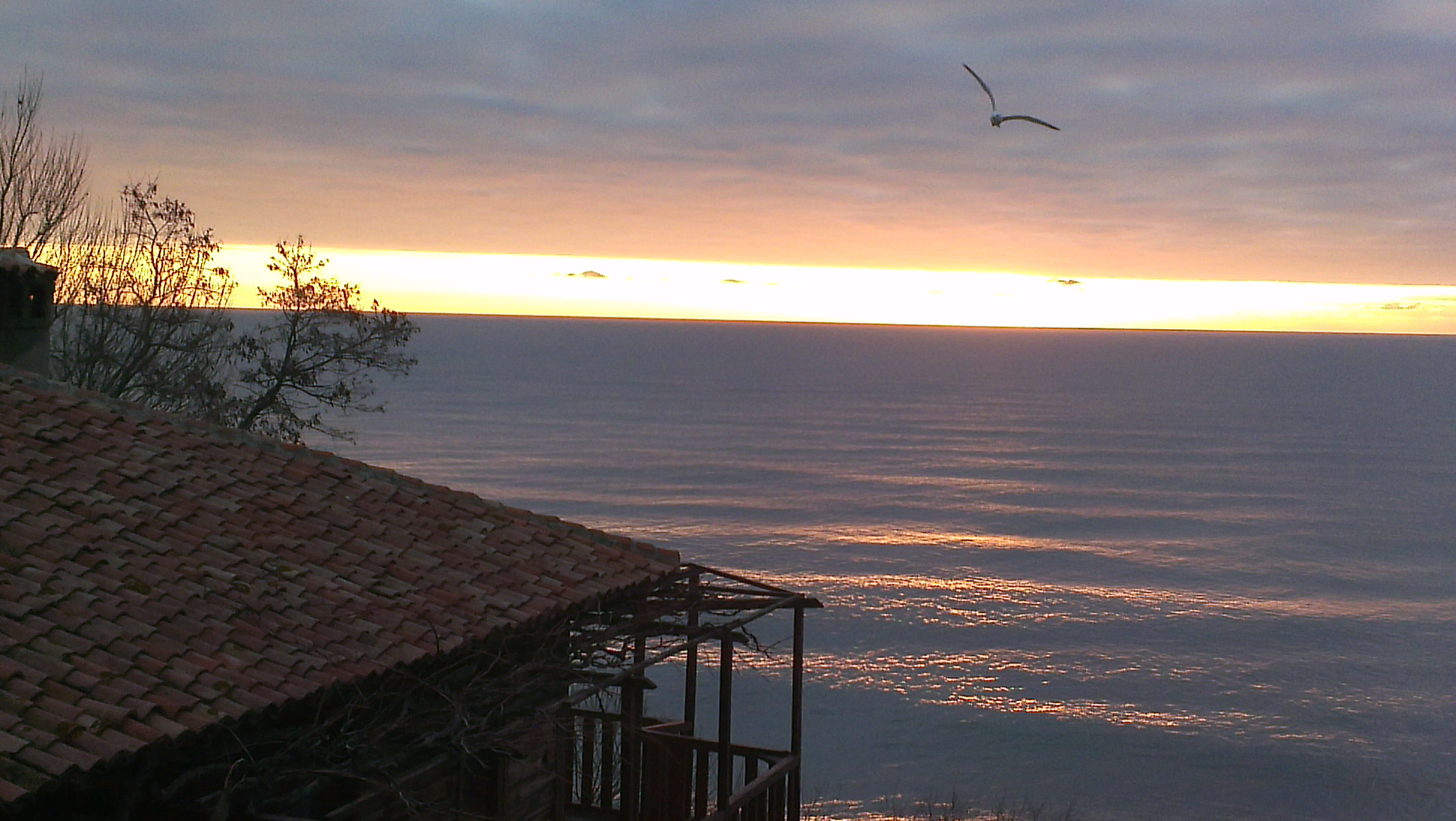sea morning