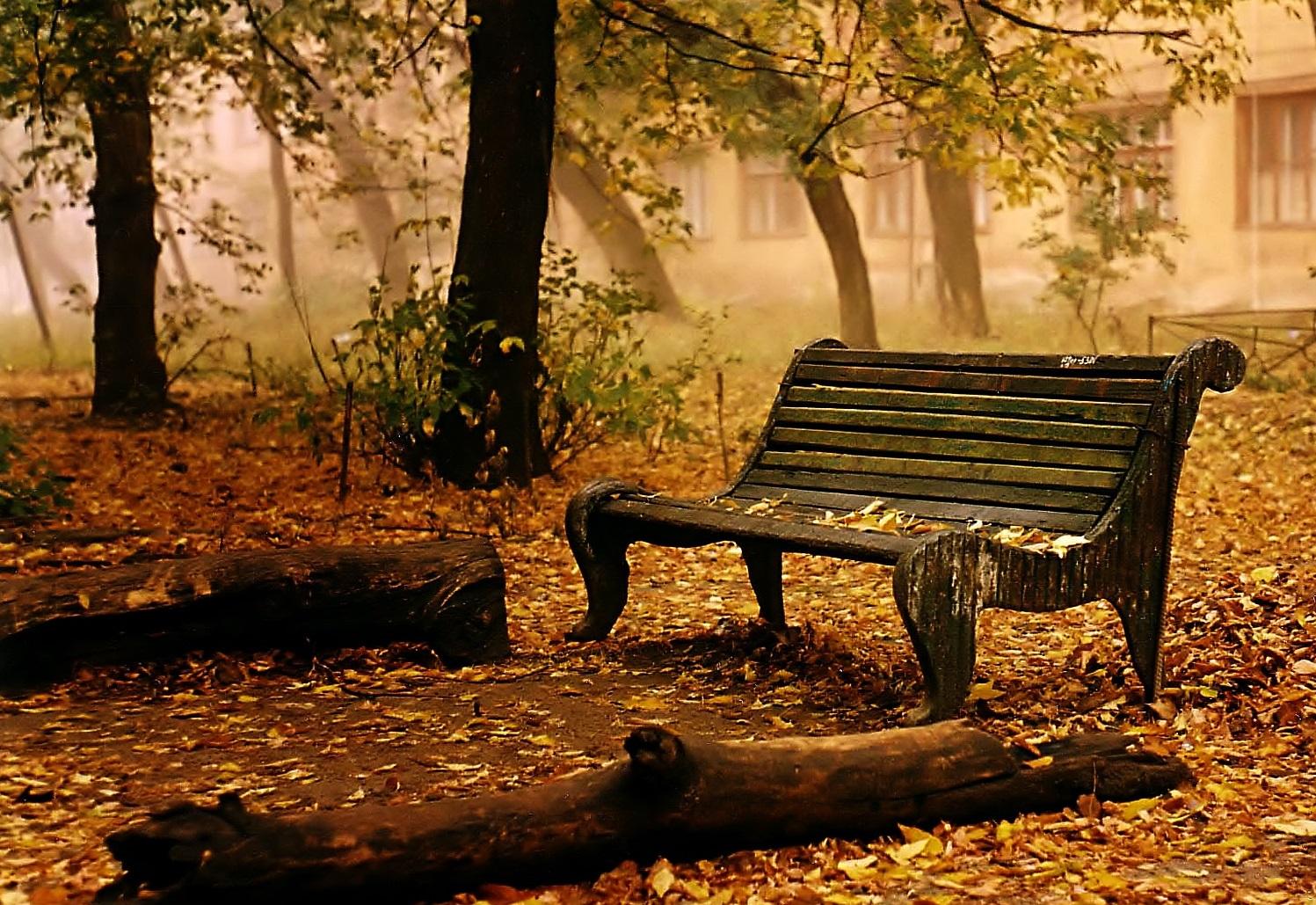 Autumn_Bench