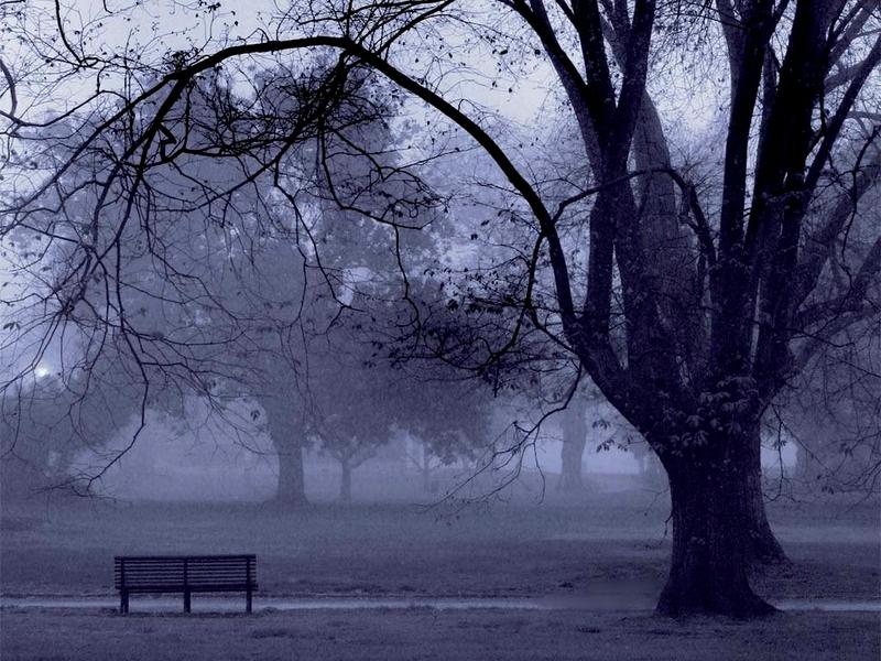 misty-park